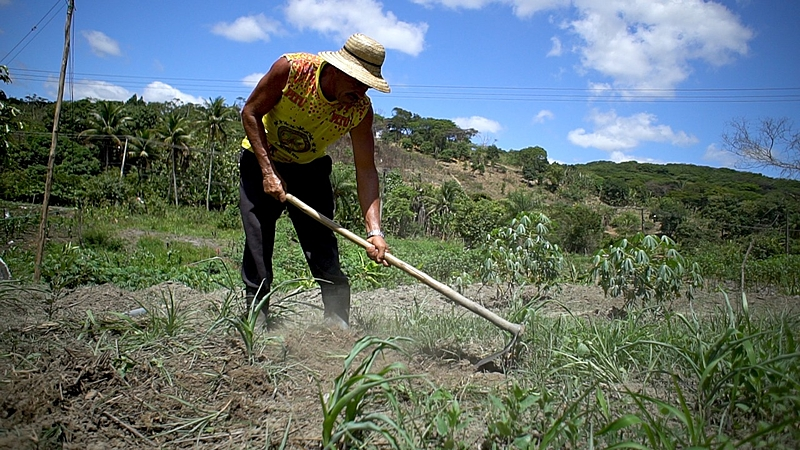 trabalhador ara terra