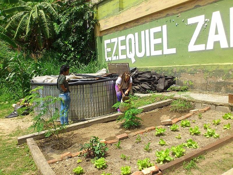 Horta Ezequiel Zamora, em pleno centro de Caracas, capital da Venezuela