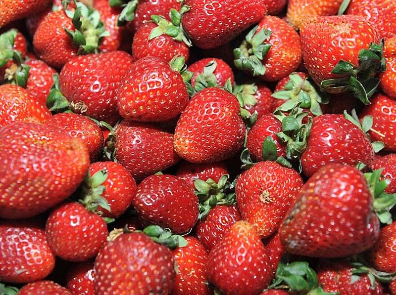 O morango é um dos alimentos mais contaminados por agrotóxicos