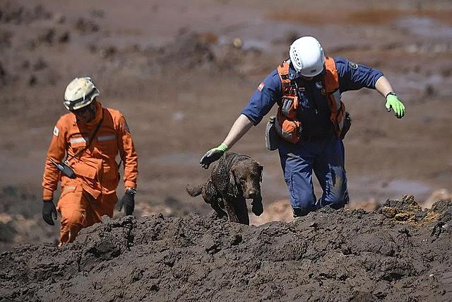 Bombeiros trabalham no resgate dos corpos em Brumadinho, em janeiro deste ano