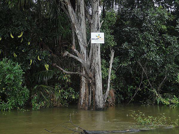 Em trecho do rio Xingu, placas demarcam área da Belo Sun em troncos de árvores
