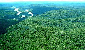 La Reserva Nacional de Cobre es un área de 47 mil kilómetros cuadrados entre los estados de Pará y Amapá, en la región Norte de Brasil