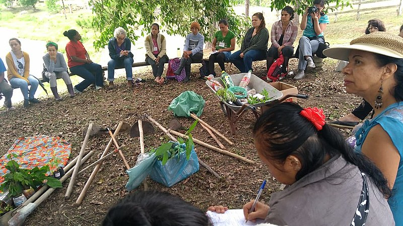 Roda de conversa de acolhida e preparação para mutirão de plantio do curso de Formação em Economia Feminista e Solidária