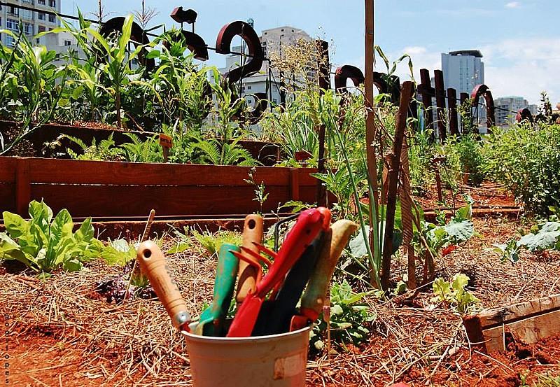 A gestão da horta é feita de forma solidária e são feitas atividades de educação ambiental