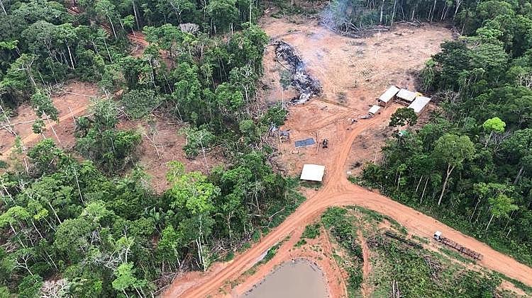 Uma das áreas mapeadas por força-tarefa é no município de Boca do Acre (AM).