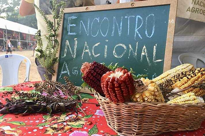 IV Encontro Nacional de Agroecologia (ENA) será em BH, capital de Minas Gerais