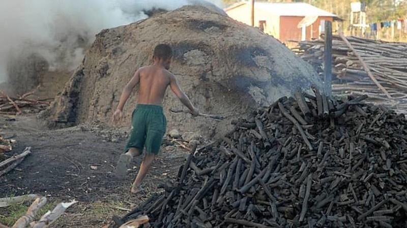 PEC do Trabalho Escravo foi defendida por diversas entidades civis e instituições, mas fortemente criticada pela bancada ruralista
