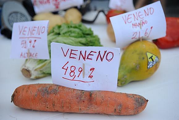 Alimentos que vão à mesa dos brasileiros concentram altas taxas de agrotóxicos