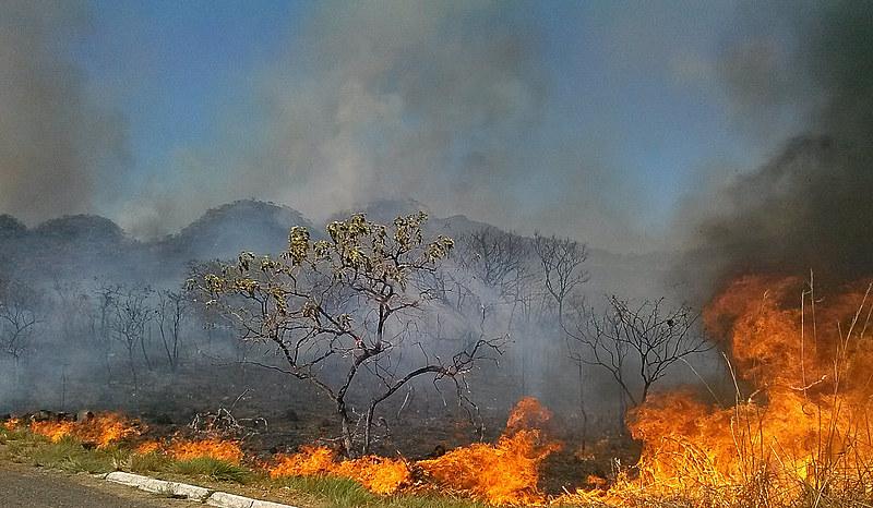 A falta de empenho do governo em resolver os problemas das queimadas levaram a suspensão do fundo Amazônia (cerca de 35 milhões de euros)