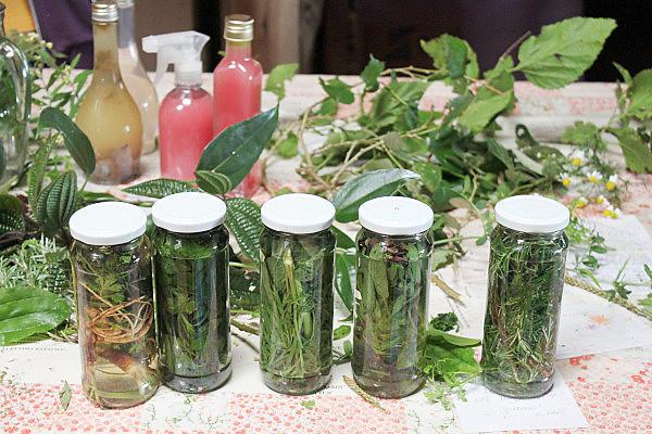 Chás, benzeção, meditação e outras práticas de cura serão disponibilizadas
