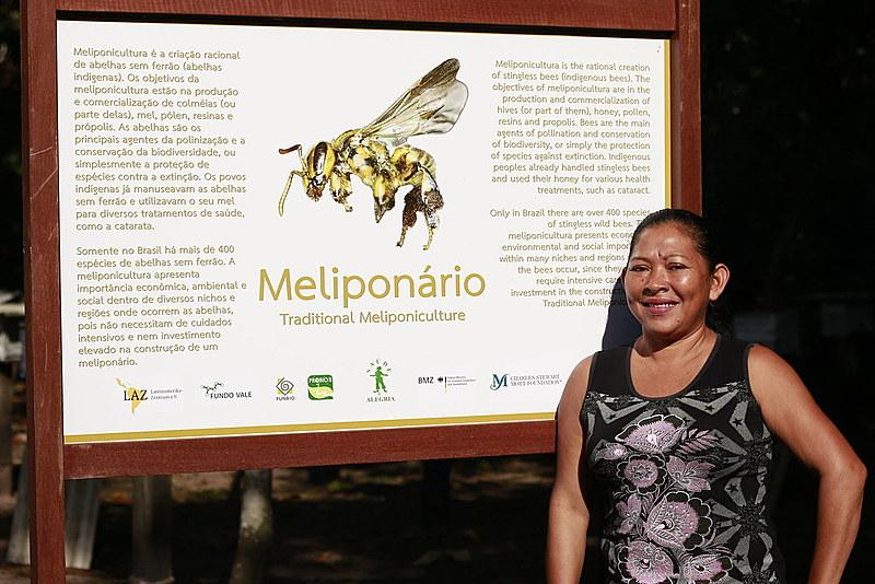 """Joelma Lopes: """"Como por aqui não há quem trabalhe com a soja, nossas abelhas estão bem"""""""