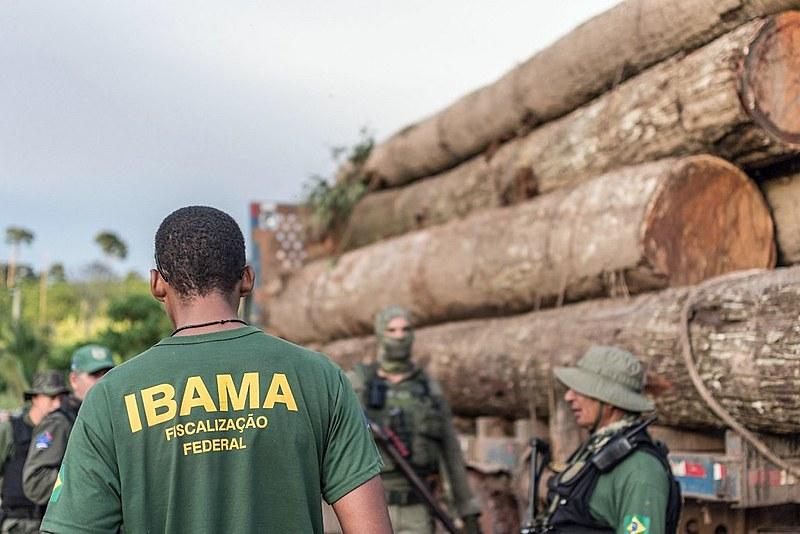 Falta de definição sobre o comando do Ibama prejudica fiscalização no Pará