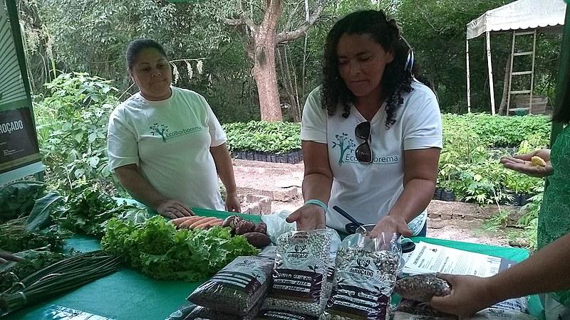 Além do PAA e PNAE, parte da produção é vendida em feiras agroecológicas