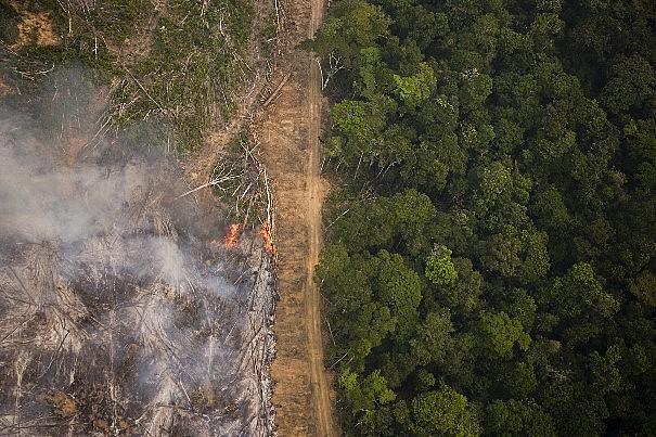 """Lançamento da Campanha """"Seja Legal com a Amazônia"""" traçou o perfil do roubo de terras"""