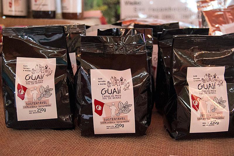 Café é produzido sem agrotóxicos ou sementes transgênicas