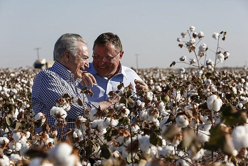 O presidente Michel Temer e o ministro da Agricultura, Blairo Maggi, em colheita estadual de algodão no Mato Grosso