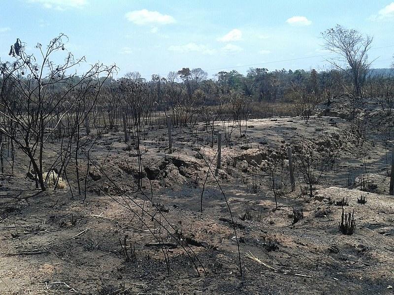 Terra indígena Bacurizinho queimada