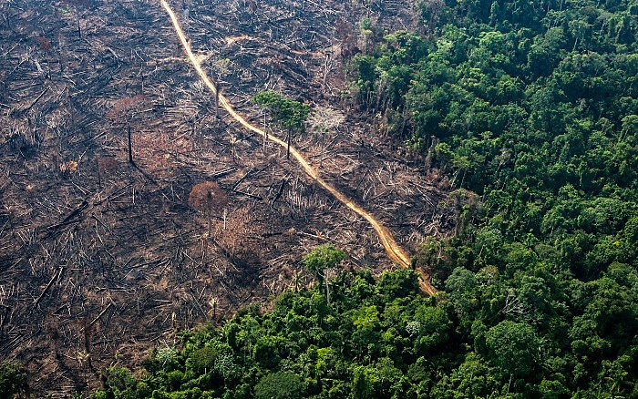 O MPF identificou 2,3 mil réus ligados a desmatamentos ilegais em área igual ou superior a 60 hectares na Amazônia
