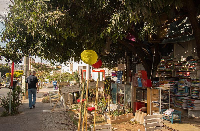 Existente há dois anos, a Casa da Árvore foi ameaçada por notificação da Prefeitura de Belo Horizonte