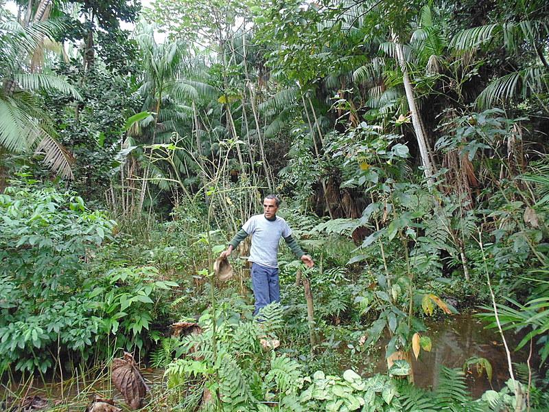 """""""Plantar água não é plantar árvore, é colher chuva e guardar essa chuva pra momentos não chuvosos"""" afirma Newton Campos, da Plantágua"""