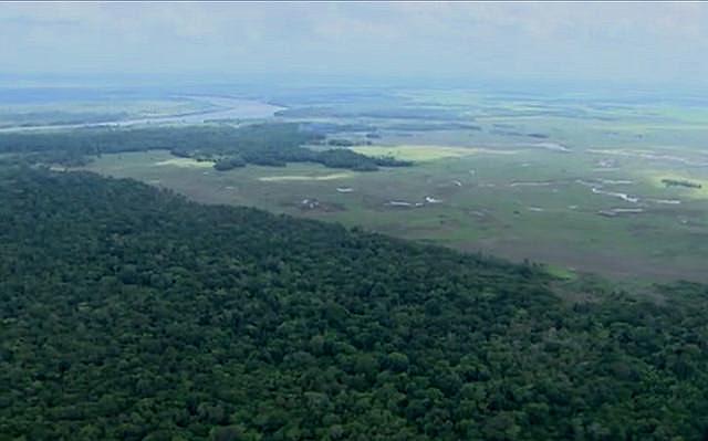 La reserva abriga nueve áreas de conservación forestal, entre unidades de conservación, parques y dos territorios indígenas