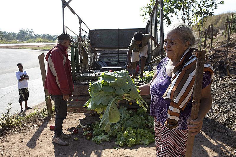 Joana acha alface no meio do monte de legumes trazidos na carroceria do caminhão por Onofre