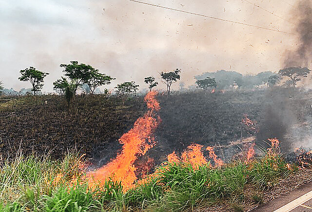 Desmatamento é o primeiro passo da grilagem. Registro de queimadas na BR-155, em Eldorado do Carajás, no Pará