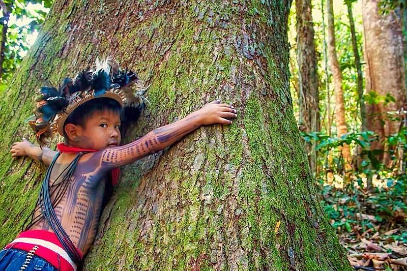 Para os povos indígenas, a chamada mãe terra é fonte de vida, espaço religioso e de convivência