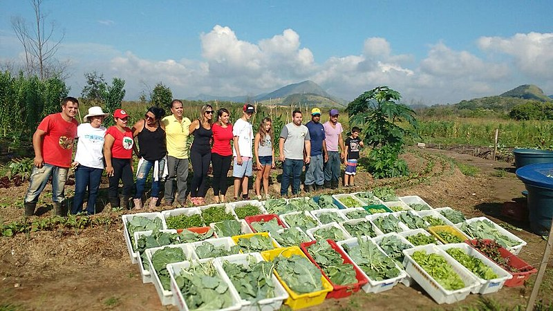 Parte da colheita de hortaliças da Unidade é doada semanalmente ao Hospital Municipal, creches e escolas
