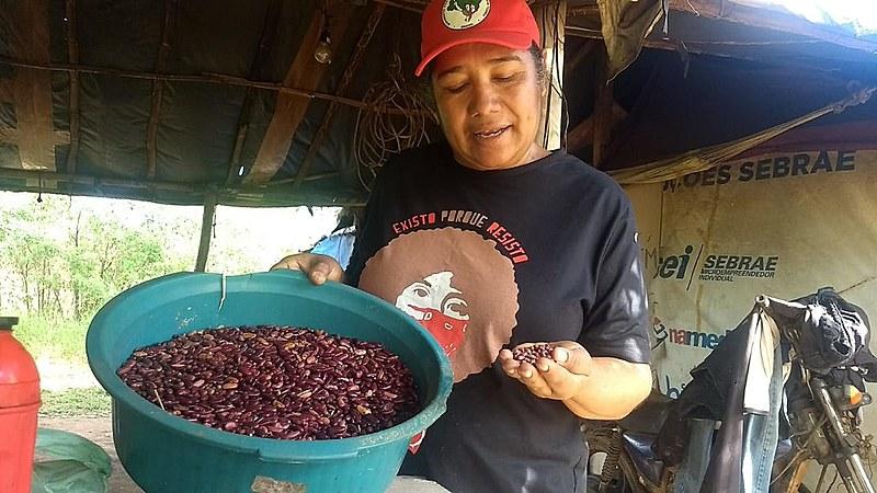 Maria Moureira, do acampamento Dom Tomás Balduíno foi quem trouxe os primeiros oito caroços de feijão Jalo Roxo de Minas Gerais