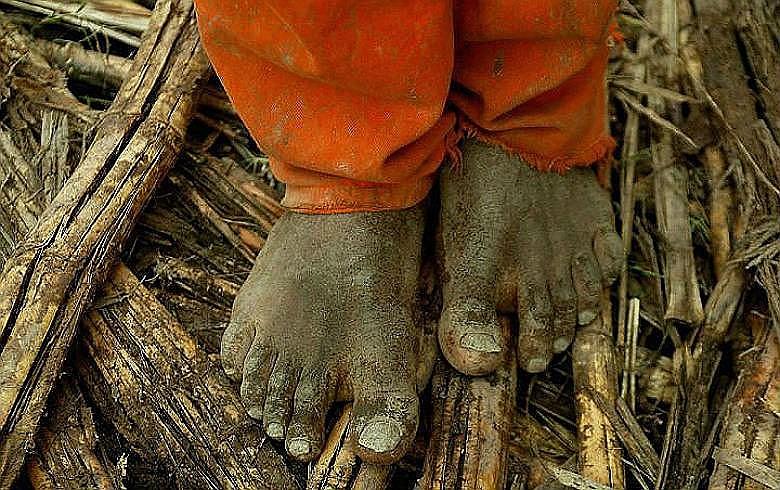 Governo descumpre portaria que prevê a atualização e a divulgação do cadastro de empregadores que utilizam mão de obra análoga à escravidão