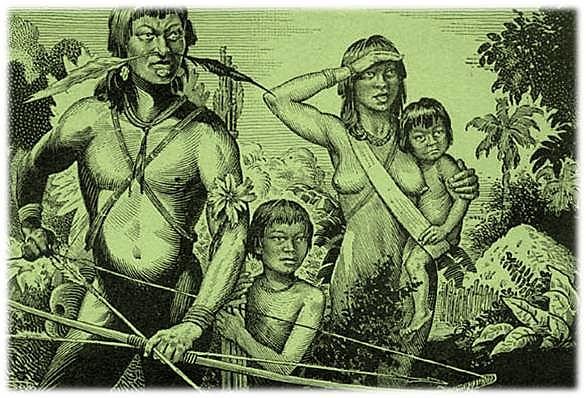 Os tupinambás muito se admiram de os franceses e outros estrangeiros se darem ao trabalho de buscar aqui o pau-brasil