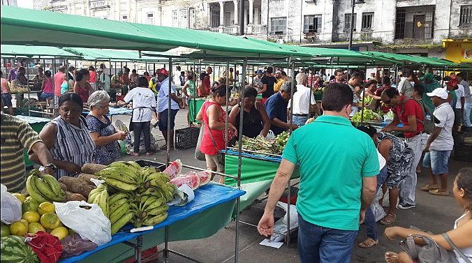 Feira Agroecológica no Ponto de Cem Réis