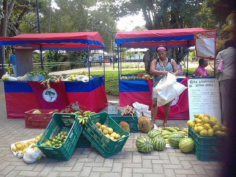 Feira Agroecológica da Reforma Agrária acontece todas as quartas-feiras no Campus de Ondina da UFBA