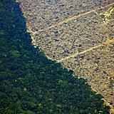 Registro aéreo de área derrubada da floresta amazônica em Porto Velho (RO), um dos municípios campeões de desmatamento, segundo o Inpe