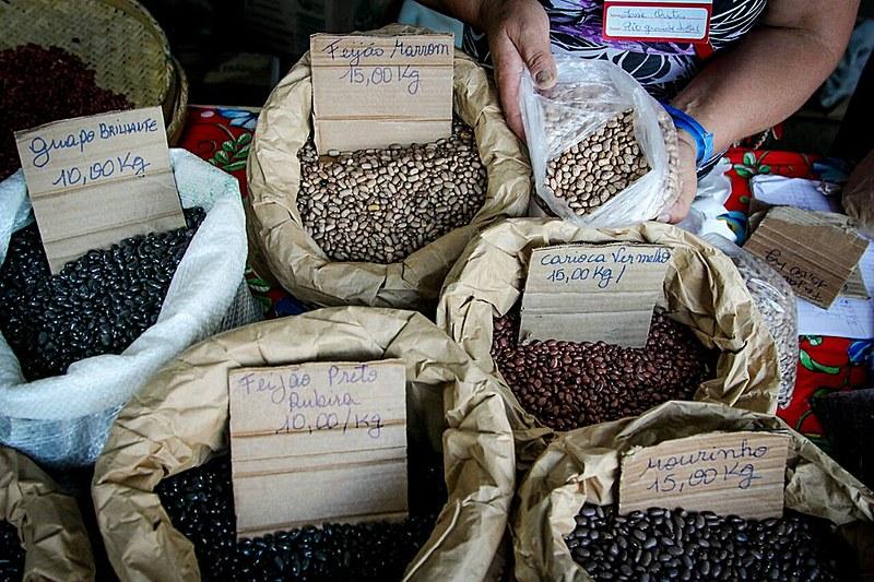 Espaço do Rio Grande do Sul comercializa dez tipos de feijão orgânico