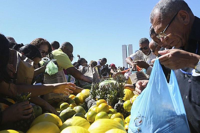 Os alimentos arrecadados serão destinados às famílias que fazem parte das ocupações e das comunidades acompanhadas pelo movimento