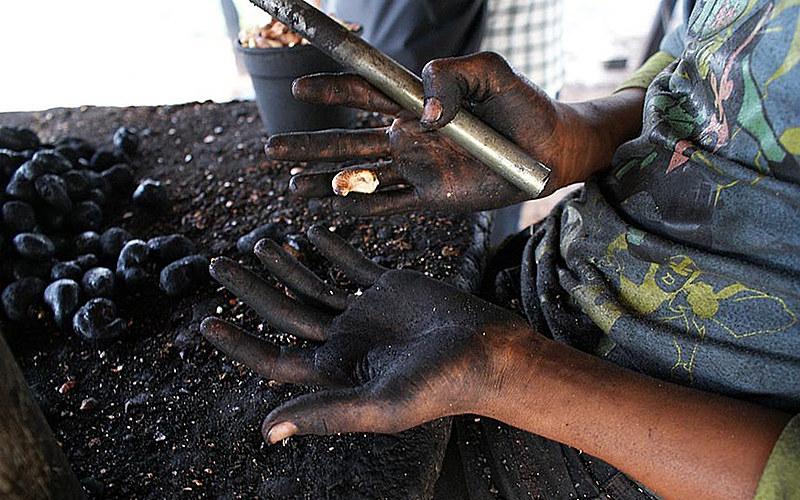 MPT lança campanha na data que marca o Dia Internacional de Combate ao Trabalho Infantil