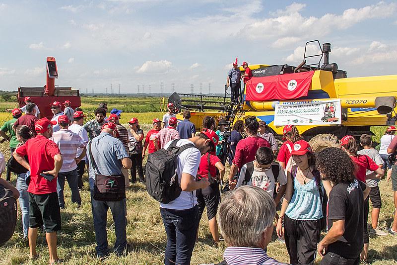 Este ano, o MST do Rio Grande do Sul se tornou o maiorprodutorde arroz orgânico das Américas
