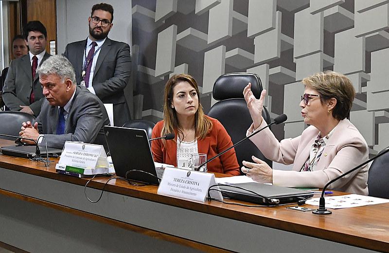 Comissão de Agricultura e Reforma Agrária (CRA) do Senado durante sabatina da ministra Tereza Cristina