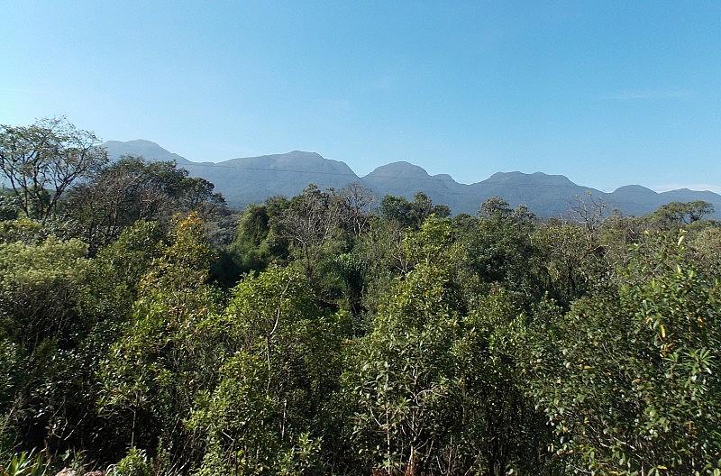 Em 2012, foi aprovada a Lei que institui o novo Código Florestal