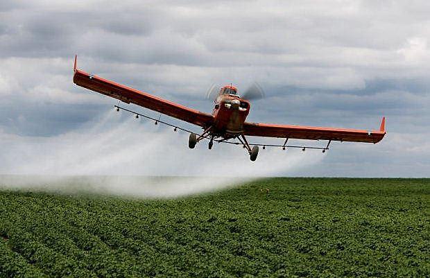 Ibama já havia proibido, em 2012, a aplicação aérea do agrotóxico Engeo Pleno, da Syngenta, em milharais