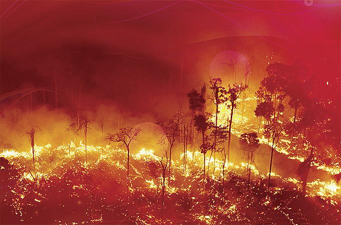 Ainda sob a fumaça da Amazônia, o governador gaúcho quer alterar 480 artigos do código em apenas 30 dias