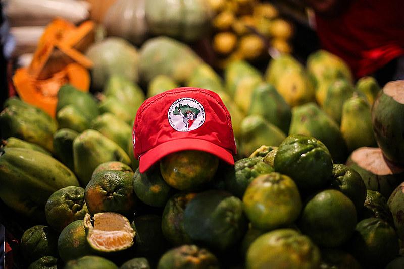 """""""Passei a investirem alimento orgânico; toda semana, o Luis, do MST, vem a Curitiba trazendo frutos de seu trabalho consciente"""""""