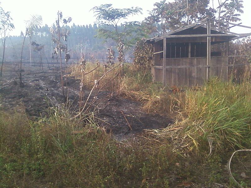 Área queimada no terreno do agricultor