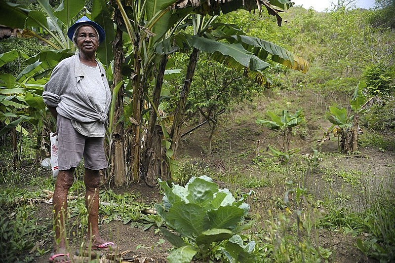 Tacira Julião Alves, remanescente quilombola, em comunidade na Ilha de Marambaia, Rio de Janeiro (RJ)