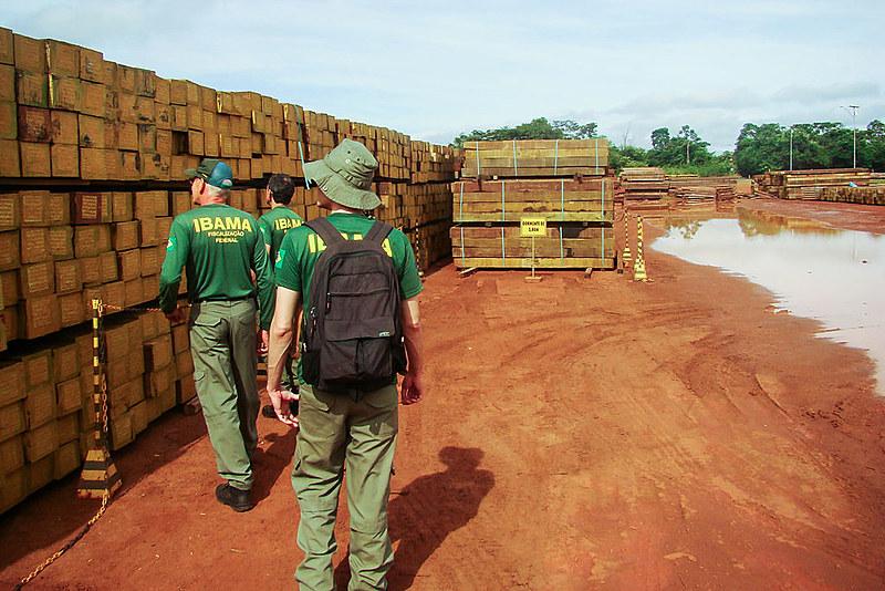 O Ibama multou a Vale em R$ 4,3 milhões por manter em depósito a madeira nativa sem licença válida para usar como dormente de trilhos