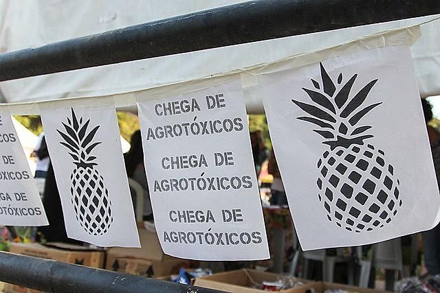 """Venda de """"extremamente perigosas"""" gerou lucros de 4,9 bilhões à Syngenta. Mais de um terço desse valor obtido em comércio com o Brasil"""