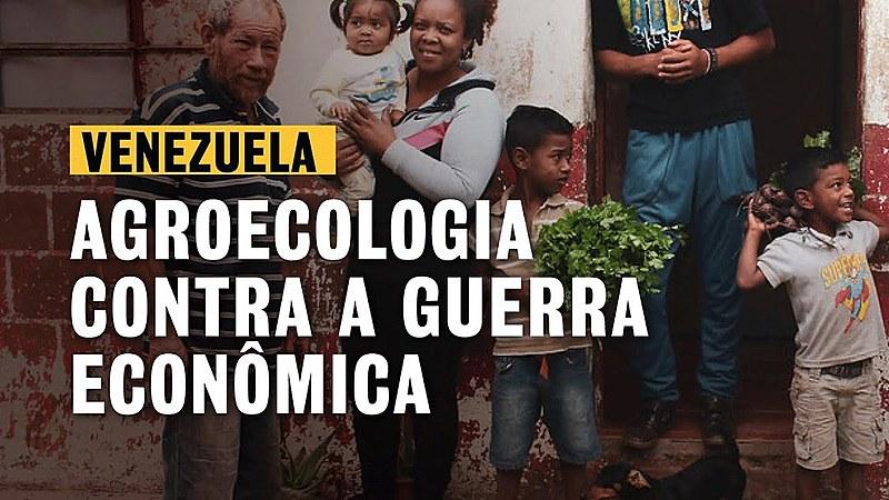 Conheça a Comuna Campesino Hugo Chávez, onde agricultores produzem até três toneladas mensais de alimentos sem veneno
