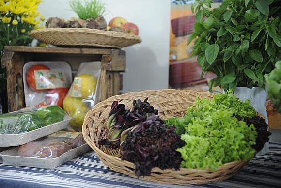 Os produtos orgânicos mais consumidos são verduras, legumes e frutas
